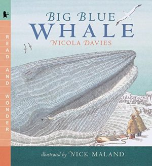 Big Blue Whale (Read and Wonder)-0