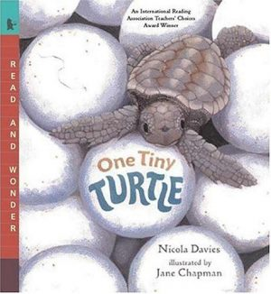 One Tiny Turtle (Read and Wonder)-0