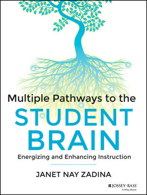 Multiple Pathways to the Student Brain: Energizing and Enhancing Instruction-0